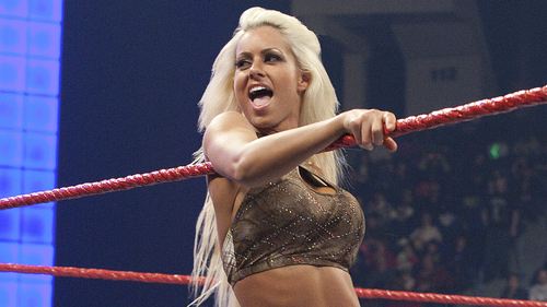 WWE Divas images MarySe  HD wallpaper and background photos