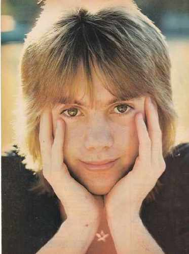Shaun Cassidy wallpaper with a triceratops and a portrait entitled Shaun