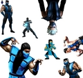 Sub zero - mortel-kombat photo