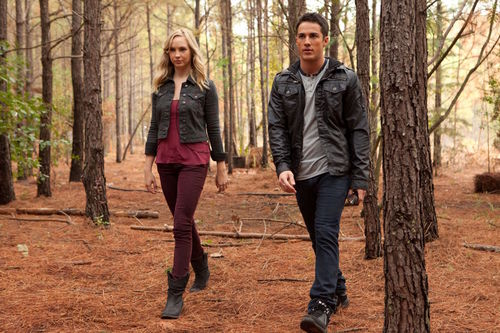 Candice Accola 바탕화면 containing a sitka 가문비, 스프루 스 and an american white birch called TVD 2x10 'The Sacrifice' stills!
