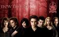 The Cullen's - the-cullens wallpaper