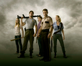 The Walking Dead - the-walking-dead wallpaper