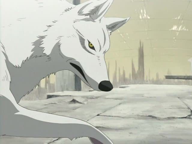 Wolves Images Wolves In Anime Wallpaper And Background Photos 16961906