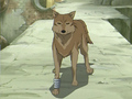 Wolves in Anime - wolves screencap
