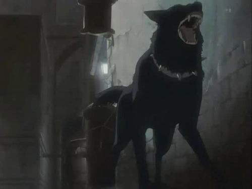 Wolves n Anime - wolves Screencap