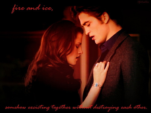 edward and bella پیپر وال