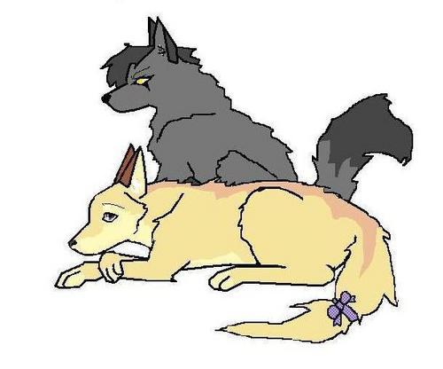 sis & bro wolvs