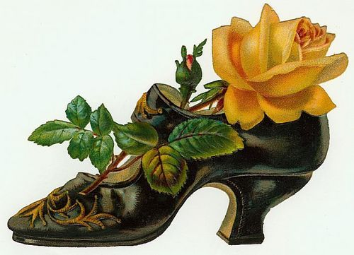 A Witch's Shoe
