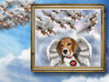 Beagle  - beagles wallpaper