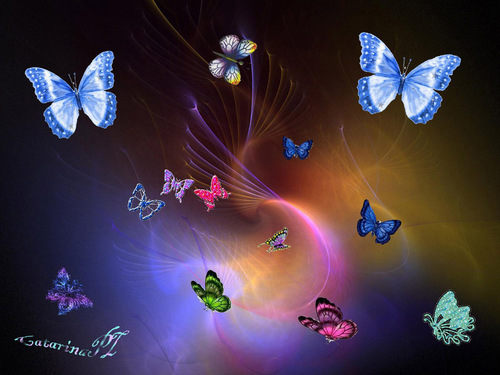 Butterflies wallpaper titled Colourful Butterflies