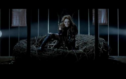 Can't Be Tamed musik video