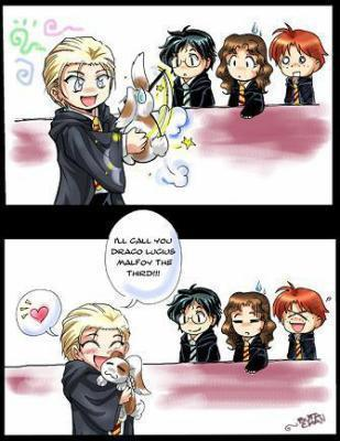 Draco and the bunny - Harry Potter Fan Art (17040250) - Fanpop