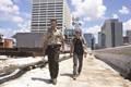 Episode 1.04 - Vatos - Promo Photos - the-walking-dead photo
