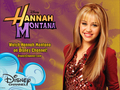 Hannah Montana Season 1 disney stuff by dj!!!