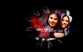 Ian & Nina - the-vampire-diaries-actors wallpaper
