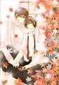 Junjou Romantica Artbook HQ