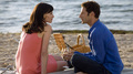 Royal Pains - Season 1 episode 4 - royal-pains photo