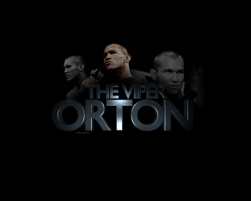 Randy Orton wallpaper possibly containing a concert and a portrait titled THE VIPER