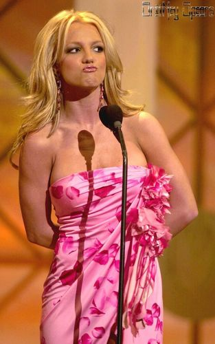 The 28th Annual American Musica Awards,At the Shrine Auditorium,2001