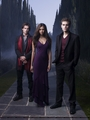 The Vampire Dairies HQ posters Season 1