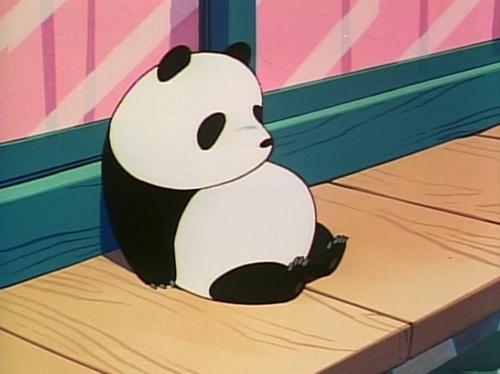 Tim The Panda