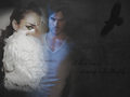 crow and butterfly - damon-and-bonnie wallpaper