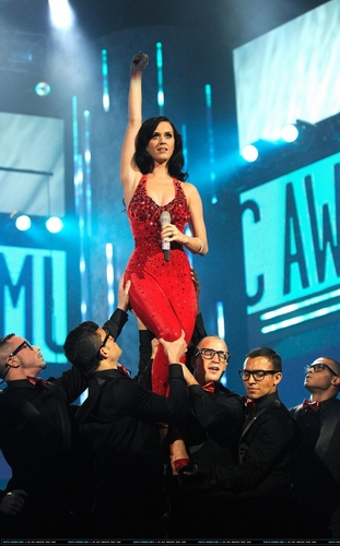 2010 American musik Awards - November 21