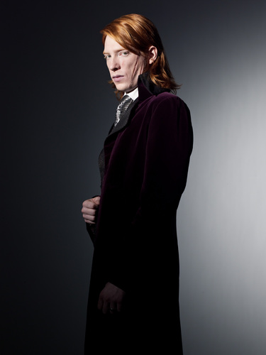 Bill Weasley wallpaper probably containing a cloak called Bill Weasley