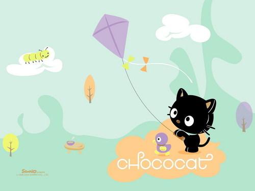 Chcocat and his ঘুড়ি
