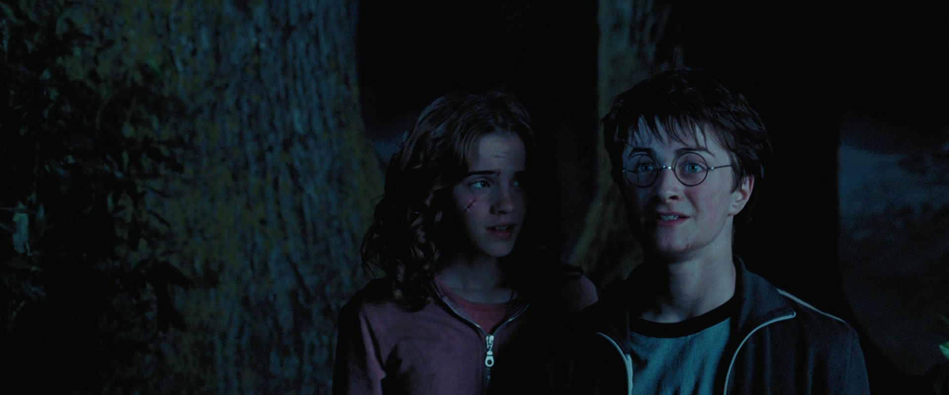harry potter and the prisoner of azkaban There is an atmosphere of fear in the movie harry potter and the prisoner of  azkaban because a prisoner escapes from a supposedly inescapable prison at  the.