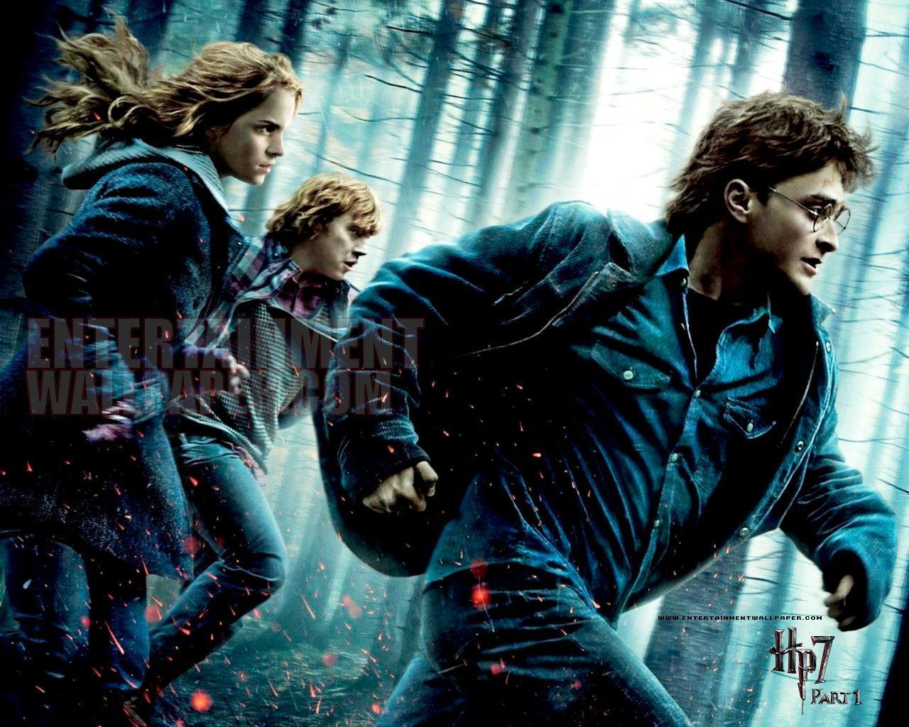 Harry Potter And The Deathly Hallows Part I Harry Potter