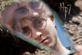 Harry Potter and the Deathly Hallows - Part I - harry-potter-movies photo