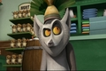 He Has A Plan - king-julien-official-club screencap
