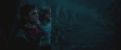Hermione - Order of the Phoenix  - hermione-granger Screencap