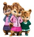 Meet the Chipmunks compentition-The Chipettes - alvin-and-the-chipmunks photo