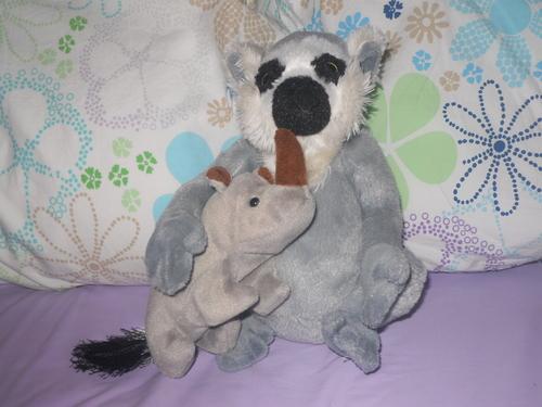 My 2 最喜爱的 动物 Together!