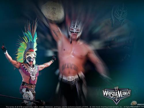 Professional Wrestling wallpaper called Rey Mysterio Jr.