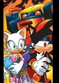 Shadow: Well................... - shadow-the-hedgehog photo