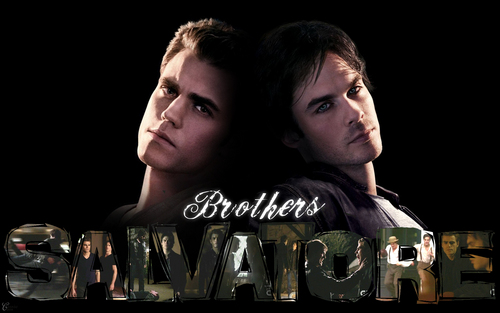 Damon and Stefan Salvatore wallpaper possibly containing a sign called Stefan & Damon