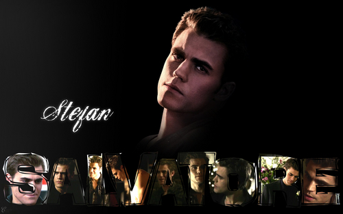 Stefan Salvatore 壁纸 probably containing a wine bar and a sign entitled Stefan Salvatore