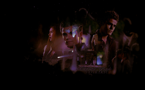 Paul Wesley wallpaper probably containing a concert titled Stelena