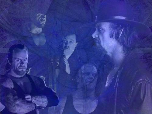 Professional Wrestling wallpaper called Undertaker