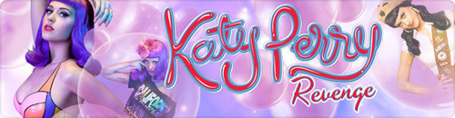 katty perry banner