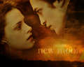 g - twilight-movie wallpaper