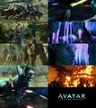 AVATAR - avatar fan art
