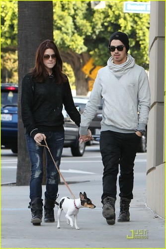 Ashley Greene and Joe Jonas take a walk in Los Angeles (November 24)