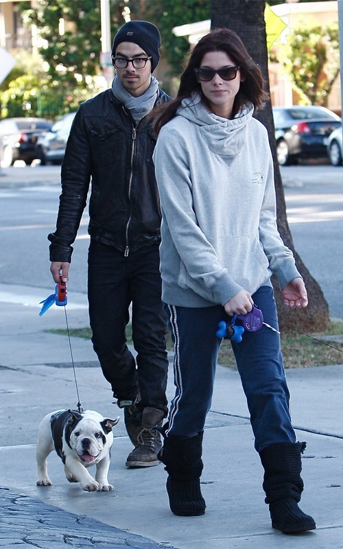 Ashley and Joe Jonas Walking their Hunde in LA - November 26, 2010