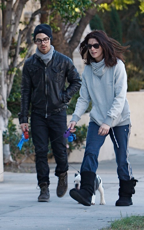 Ashley and Joe Jonas Walking their সারমেয় in LA - November 26, 2010
