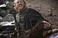 Bronn - game-of-thrones photo