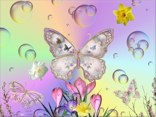 Butterflies wallpaper entitled Butterflies In Spring